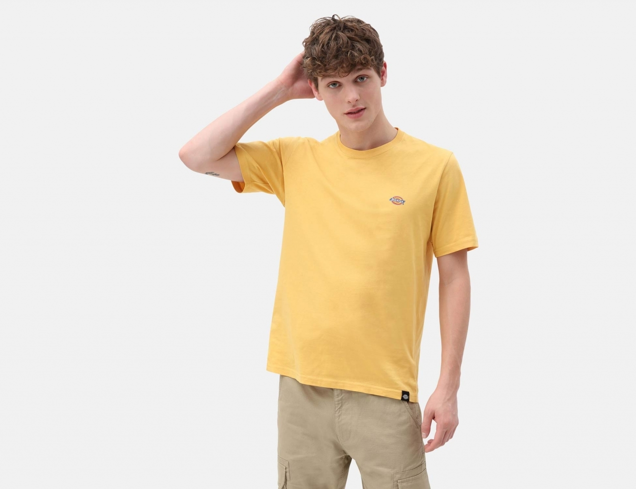 Dickies Stockdale Regular T-Shirt